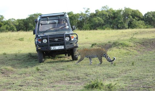 safari from nairobi